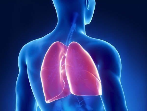 Coágulos pernas sanguíneos e pulmões nas de tratamento