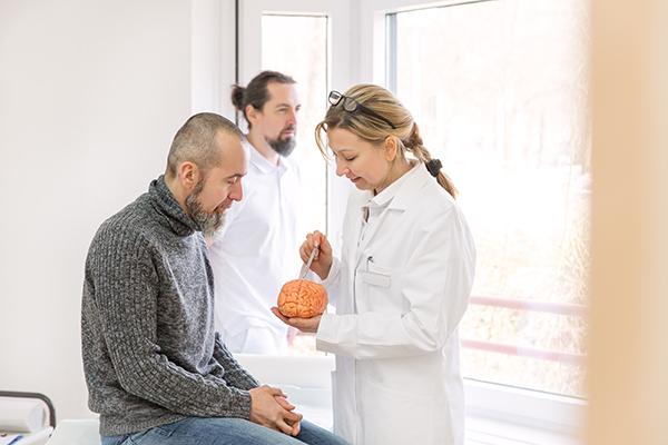 Médica neurologista mostra modelo de cérebro a paciente