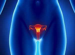 Boala condilomului la femei, Condilomatoza genitală - Viața Medicală