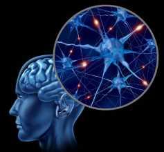 Cérebro e neurónios a ilustrar a doença de parkinson