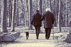 Casal de idosos a passear cão no parque