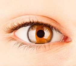 Olho cor de mel