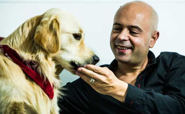 Homem careca com cão golden retriever